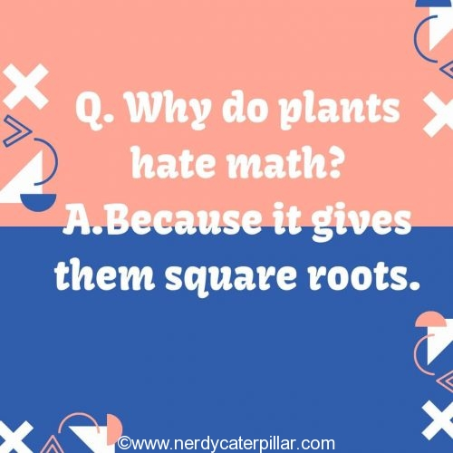 Math Jokes For Middle School