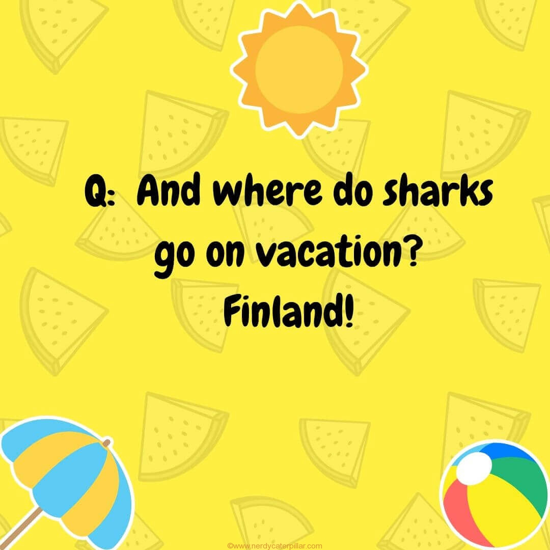 Vacation Jokes For Kids