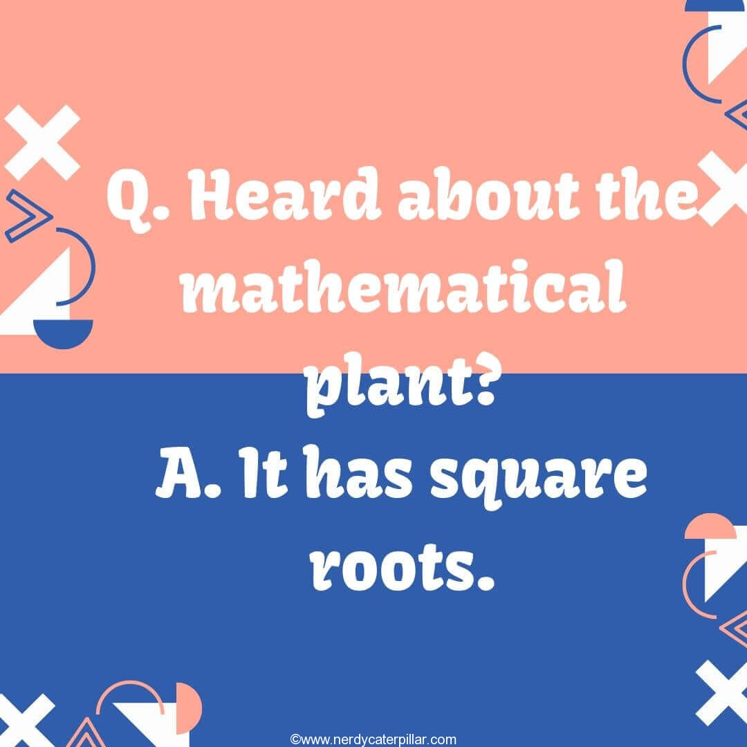 Best Math Jokes
