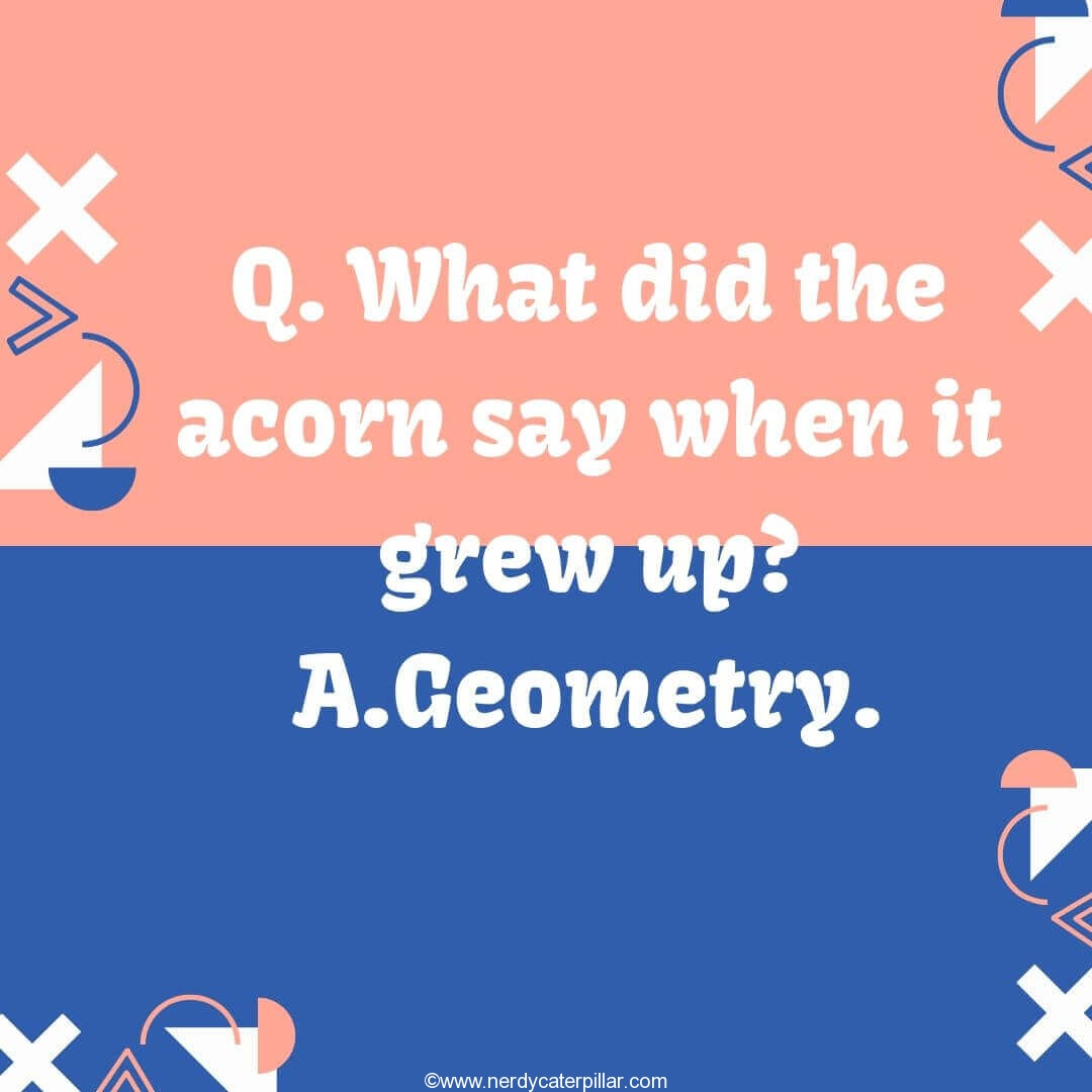 Geometry Joke For Kids