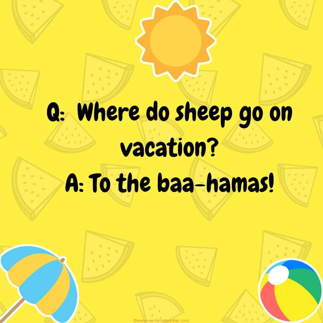 Hilarious Summer Jokes