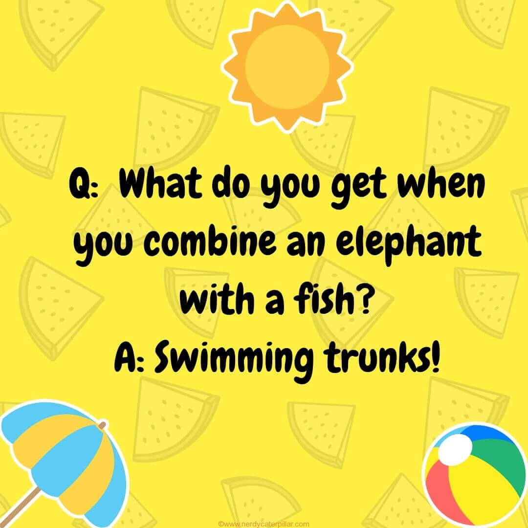 Summer Jokes For Kids