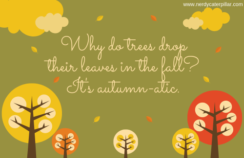 autumn one liners