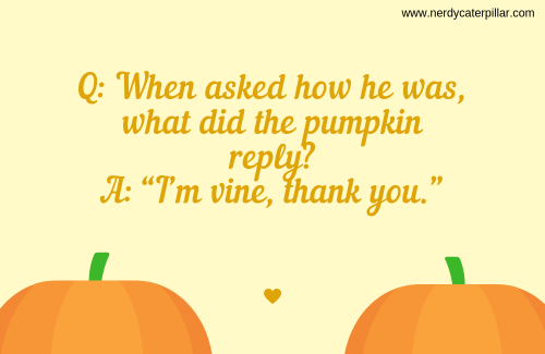 Pumpkin Riddles For Kids