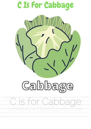 C for Cabbage worksheet