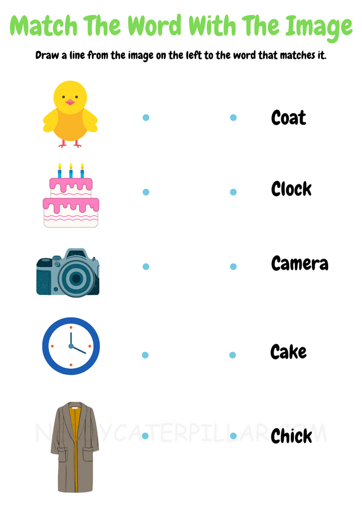 Match the words with the images