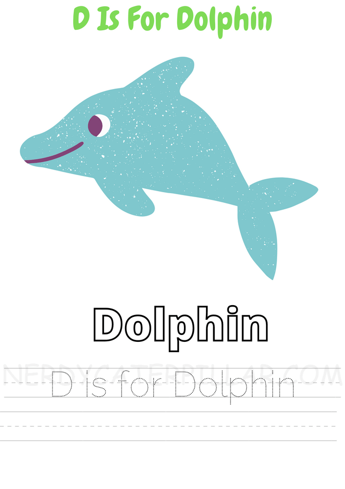 D for dolphin worksheet